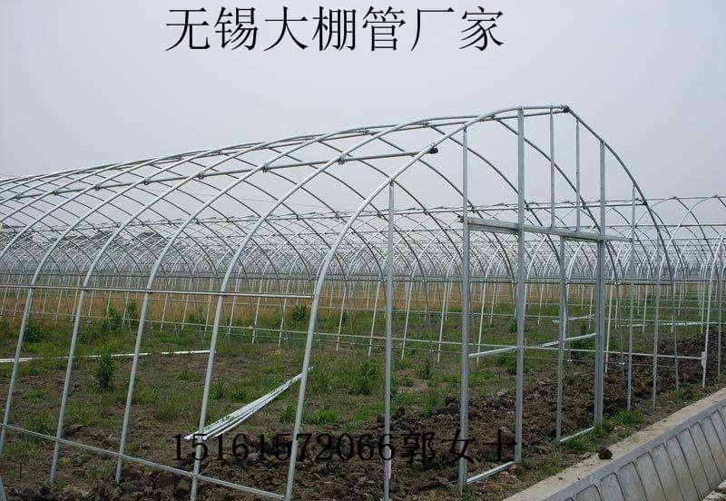 湖南郴州桂阳水果大棚管