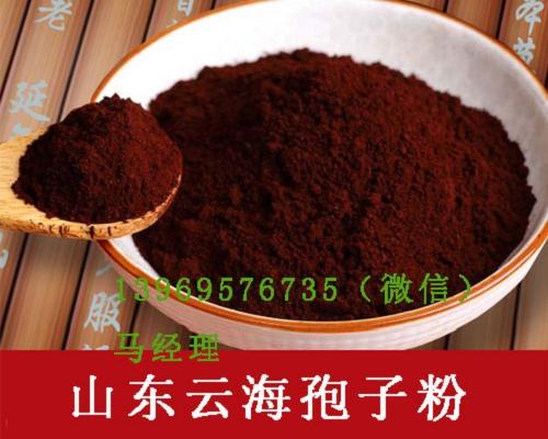 惠州灵芝破壁孢子粉主要分类